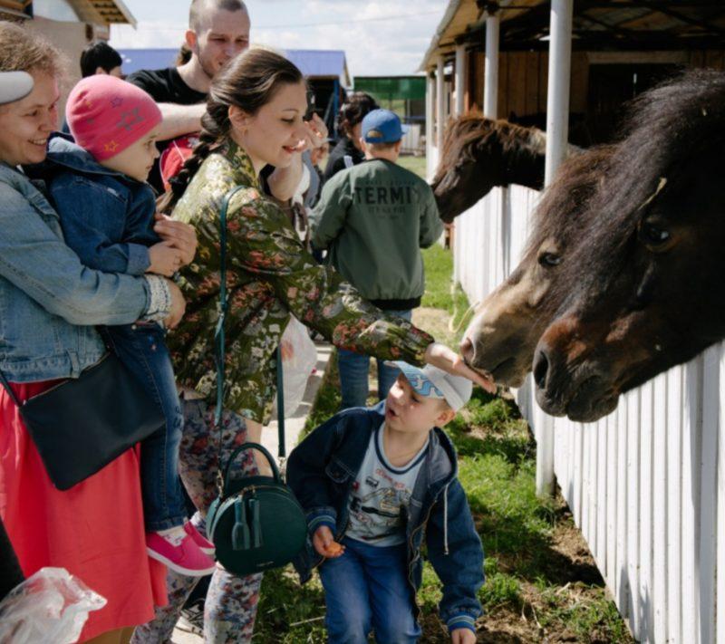 Клуб добряков в Тюмени устроил экскурсию в конный клуб для подопечных