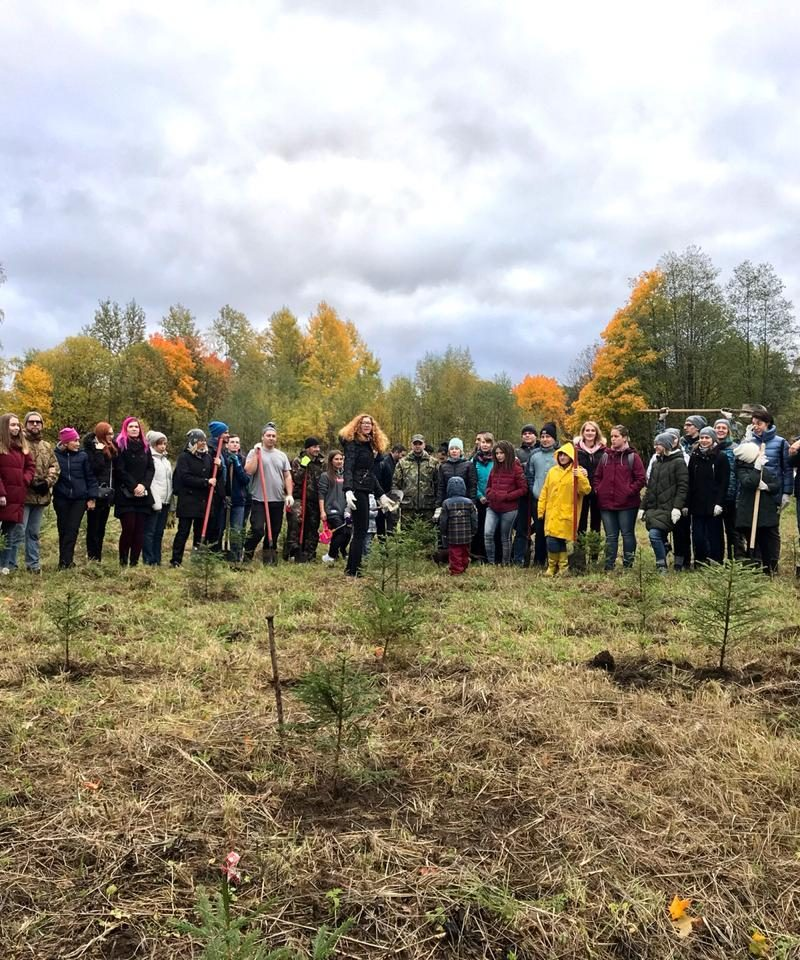 Питерские добряки посадили лес