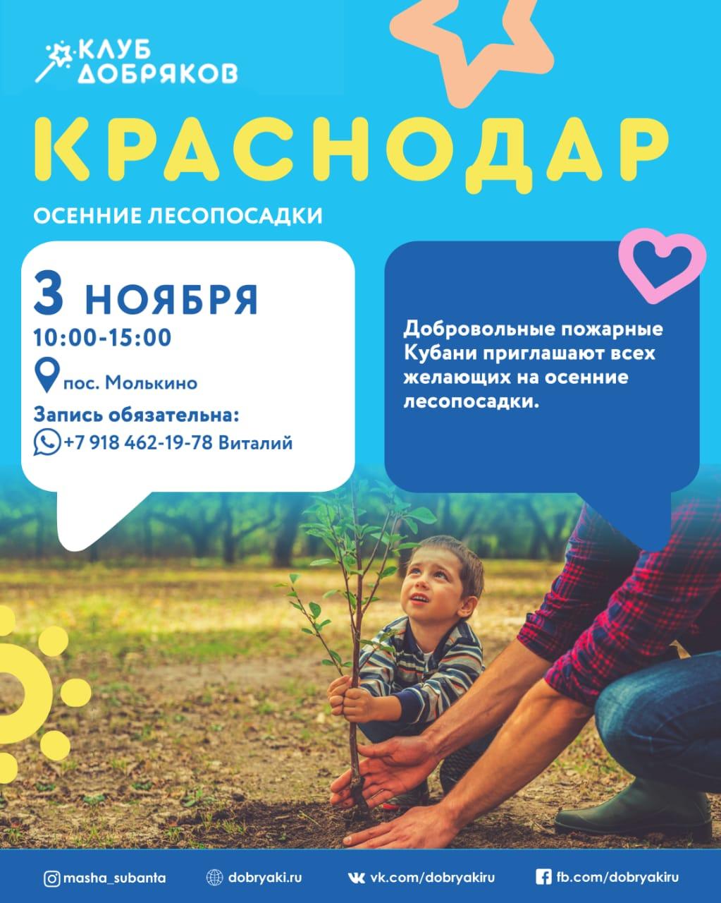 Добряки Краснодара поучаствуют в восстановлении леса